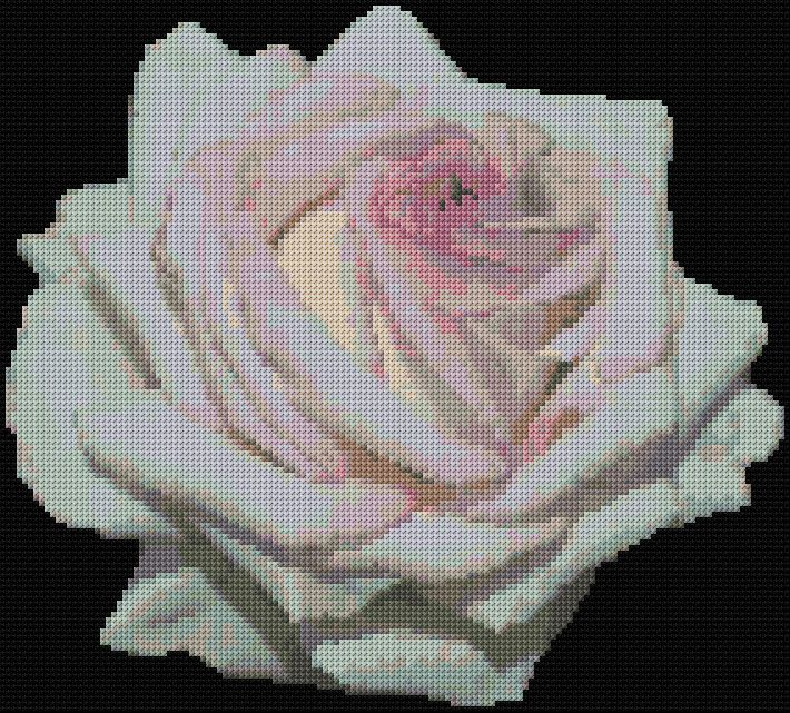 Rose 4 Free Cross Stitch Pattern