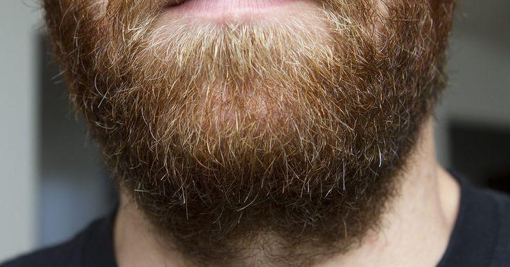 Cómo reparar una barba irregular. Muchos hombres desean una barba espesa y tupida. Sin embargo, la forma en que crece el bello facial depende principalmente de la genética y tal vez obtengas una barba que crece en forma despareja. Si tus niveles hormonales son bajos, los folículos pilosos tal vez no estén actuando en la forma adecuada para obtener la barba masculina que deseas. ...