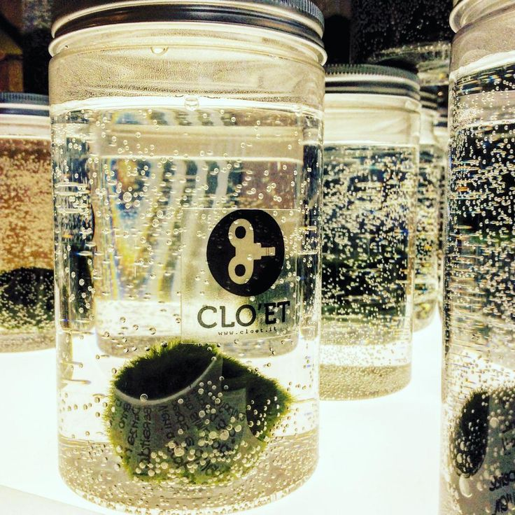Clo'eT - blog