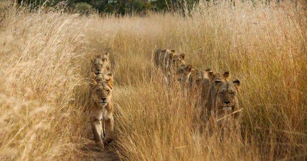 2017 National Geographic Seyahat Fotoğrafları Yarışması'nın En İyileri Olmaya Aday Fotoğraflar Seçildi! | Sanat Karavanı