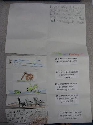 I was lesson planning with the teacher in the second grade class I talked about in the last post (she was introducing habitats to her students). She was looking for some ideas so I taught her a song I learned from a training and we worked out a foldable her students could do. I liked that she had them write full sentences in the top flap of the foldable and they had to pick and justify one of the habitat requirements.