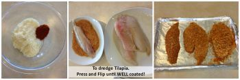 Parmesan Tilapia Coating
