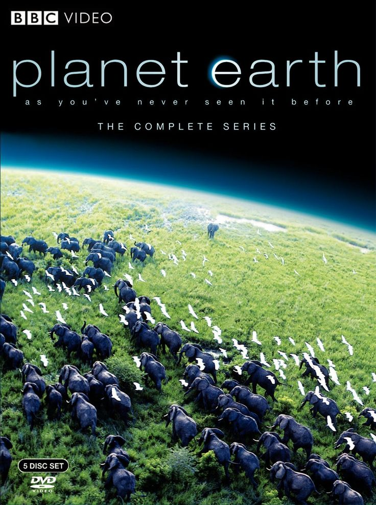 Planet Earth, one of the best travel movies of all time. For more awesome travel movie suggestions click the pin.