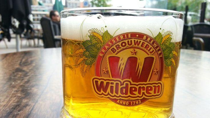 Wilderen Goud