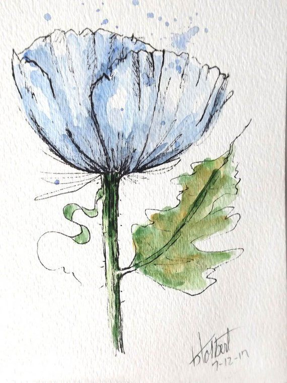 Mohn Blume Blau Original Aquarell Malerei Stift Und Tinte Hand
