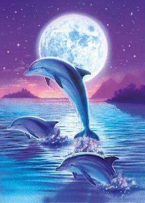 132 besten tiere delfine bilder auf pinterest delphine. Black Bedroom Furniture Sets. Home Design Ideas