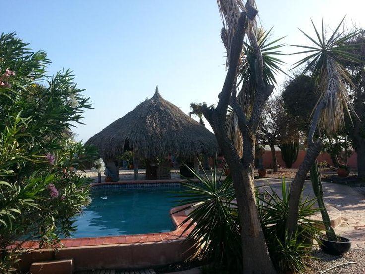Hidden Gem Aruba - Locations Côte sud-est - TripAdvisor