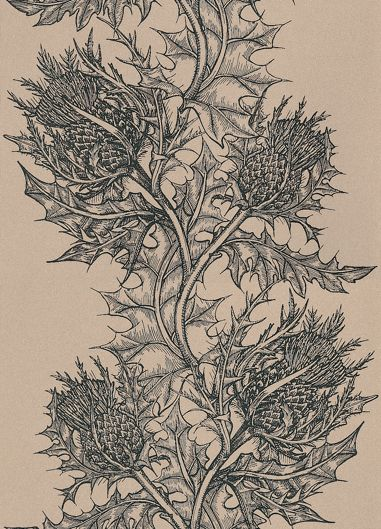 Thistle wallpaper by Timorous Beasties