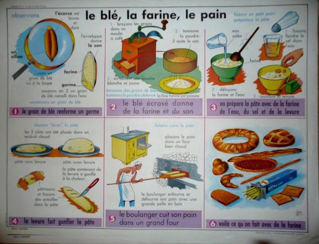 Affiche Le blé, la farine, le pain