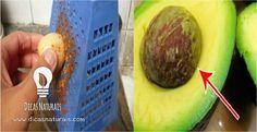 O abacate é uma frutarica em benefícios paraa nossa saúde. Boa parte das pessoas certamente sabe disso. O que muito pouca gente sabe é que o caroço (ou a semente) de abacate é um tesouro medicinal. E somente o desconhecimento… Continue Reading →