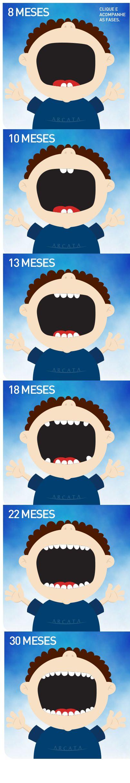 Erupção dos dentes de leite