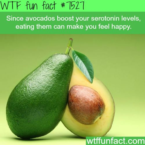Avocados can make you happy - WTF fun fact