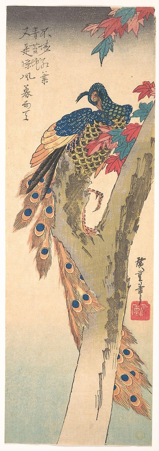 Utagawa Hiroshige (Japanese, 1797–1858). Peacock Perched on a Maple Tree in Autumn, ca. 1833. Japan. The Metropolitan Museum of Art, New York. Purchase, Joseph Pulitzer Bequest, 1918 (JP269) #peacock