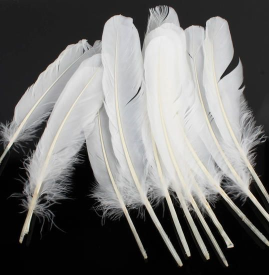 White natural loose goose quill feathers crafts for Natural feathers for crafts