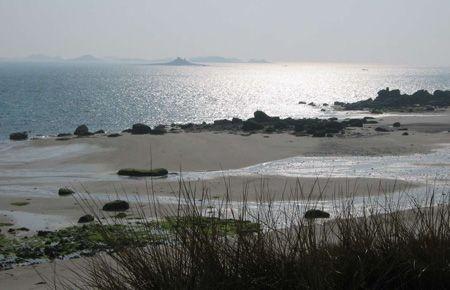 Set in a silver sea. low tide. IOS