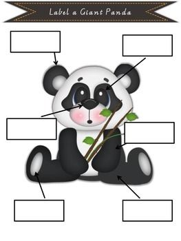 Beautifully designed Informational  report pack including worksheets. Giant Panda report. $2.00