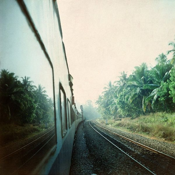 India rail print, train mirrors exotic lush green tropical palm trees,... (180 PLN) ❤ liked on Polyvore featuring home, home decor, wall art, green wall art, hand palm, photographic wall art, black white home decor and metallic home decor