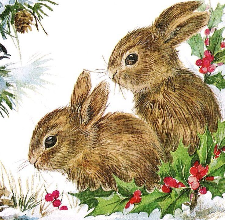Christmas Bunnies