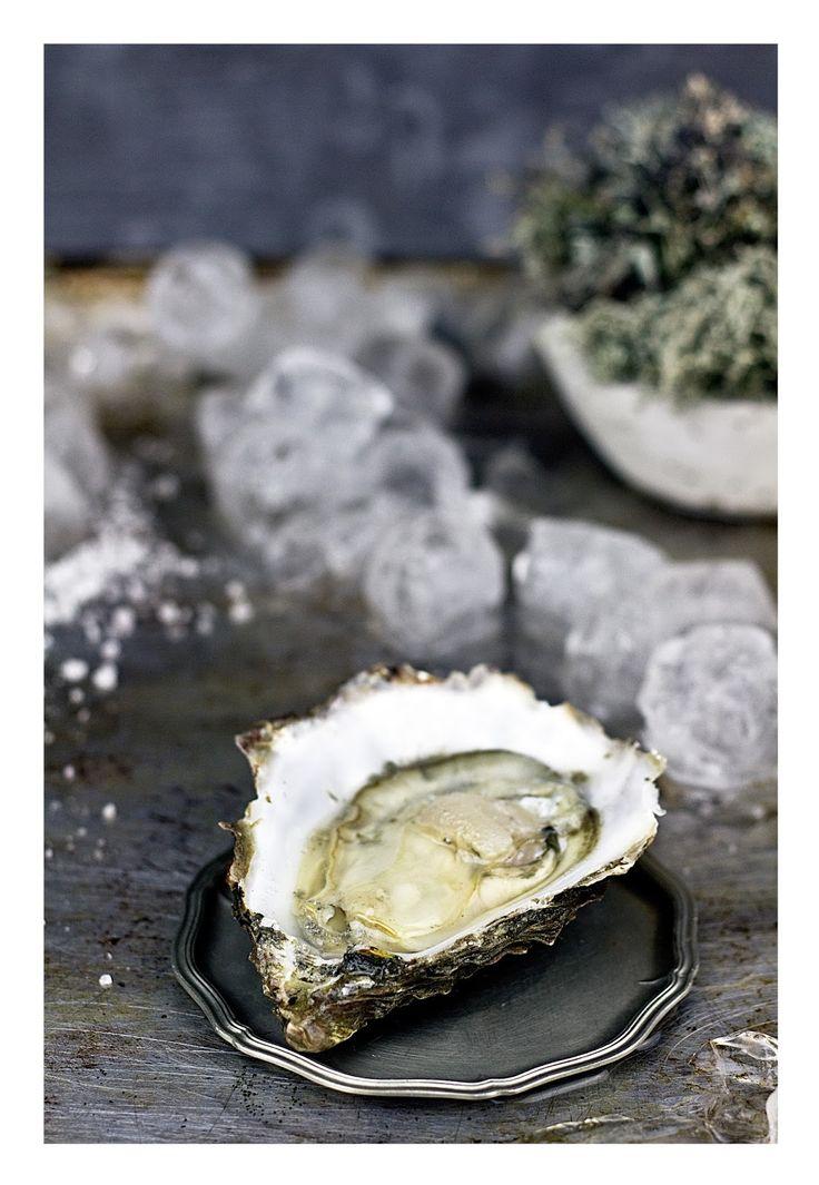 Gin cucumber oysters  http://zucchini-blues.blogspot.com/2015/11/ostrygi-z-ginem-elan-vital.html