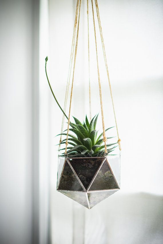NEW Linea Terrarium, large -- for air plant terrarium or small succulent -- stained glass -- terrarium supplies -- eco friendly