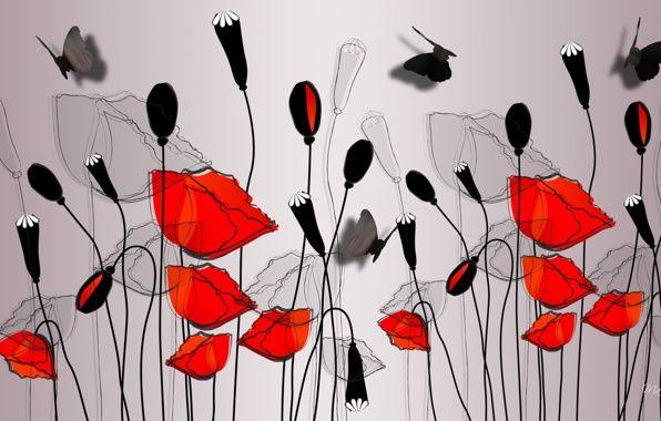Обои картинки фото рисунок, цветы, маки, бабочка, вектор