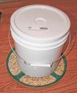 This is a great way to re use old plastic food grade buckets to feed your chickens in. You can feed baby chicks out of flat troughs but, once they're six to eight weeks old, you'll need an automatic feeder for them. If you were to buy a feeder, a cheaper one could set you back …