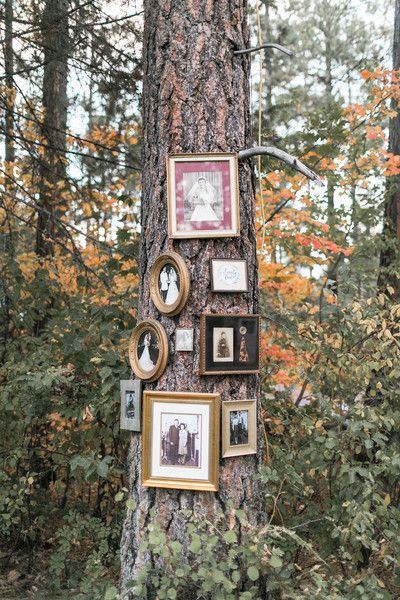 "Outdoor wedding reception decor - a family ""tree"" - literally! Eclectic gold frames hung on a tree at the outdoor wedding venue {Jacquelynn Brynn Photography}"