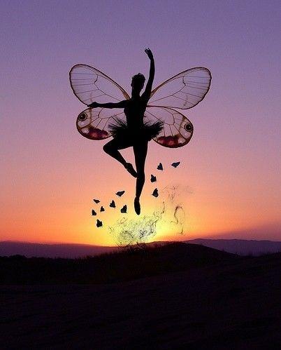 fairyFantasy, Magic, Butterflies, Beautiful, Silhouettes, Fairies Art, Dance, Fairies Costumes, Fairies Tales