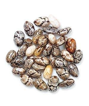 Chia Seeds | From chia seeds to flaxseeds, these little wonders are a great nutritional boost.