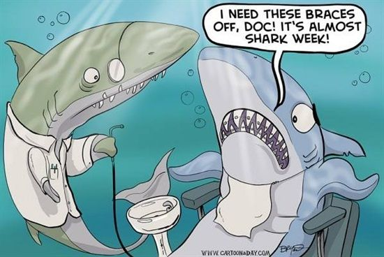 I need these braces off, Doc! It's almost Shark Week! Dentaltown