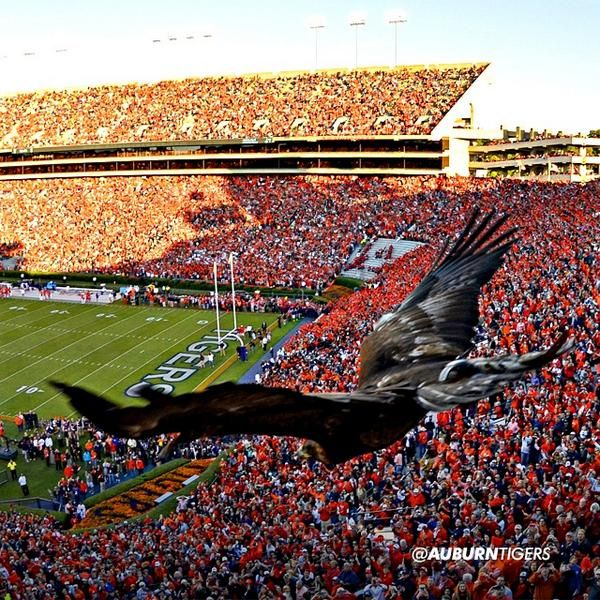 I chose this picture of the Auburn stadium on gameday because being from the south tailgates are definitely one of my favorite traditions. Not only for all the incredible memories but also with Auburn facilities setting up recycling bins all around campus promoting everyone to recycle their cans. -Personal