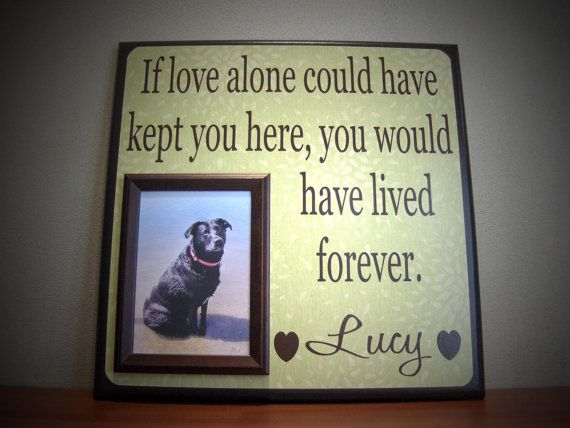 I think this is a great way to remember your dog by...totally getting this to remember our Dukey!