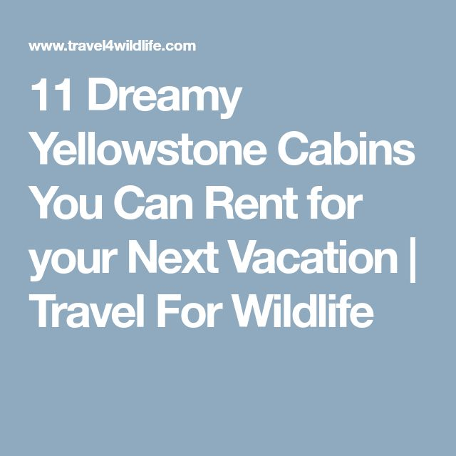 11 Dreamy Yellowstone Cabins You Can Rent for your Next Vacation | Travel For Wildlife
