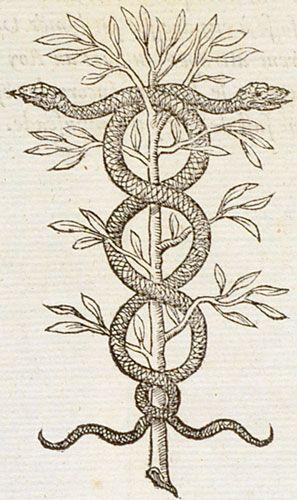 Pictura of Paradin, Claude: Devises heroïques (1557): Rerum Sapientia custos.