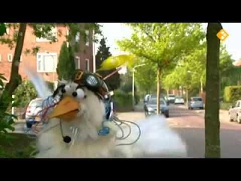 Huisje Boompje Beestje - Duiven - YouTube