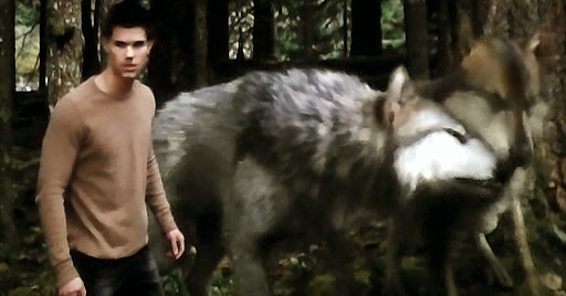 17 Best images about Twilight wolf pack on Pinterest Twilight Wolf Pack Seth