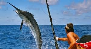 We offer all-inclusive deep sea fishing, bottom fishing, and fly fishing charters from Playa del Carmen Mexico.  These all-inclusive trips pick you up at either the Playa del Carmen ferry dock or the Puerto Aventuras marina