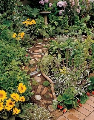 Garden Ideas North Carolina 36 best gardening images on pinterest | garden ideas, gardening