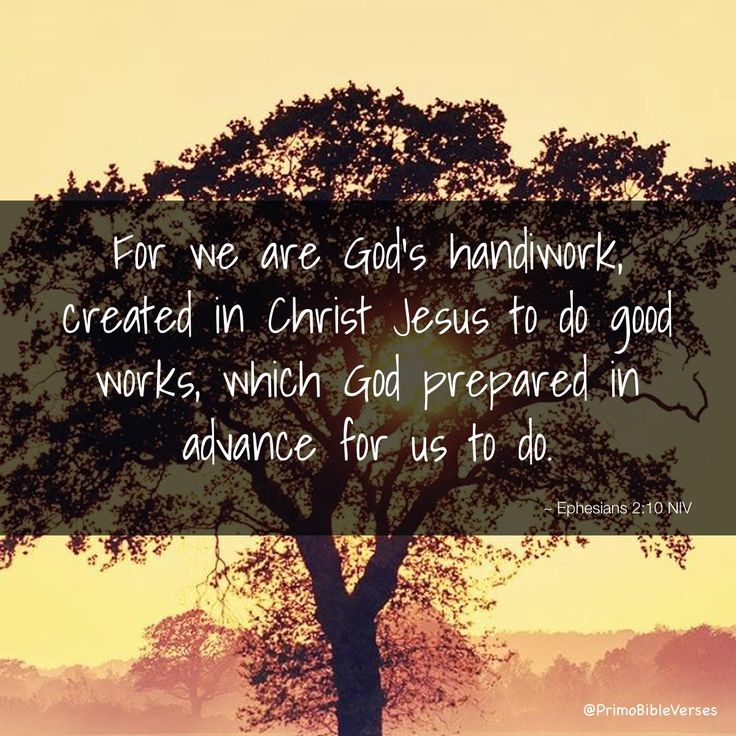 For we are God's handiwork, created in Christ Jesus to do good works, which God prepared in advance for us to do. ~ Ephesians 2:10 NIV