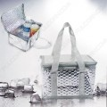 Cooler & Cosmetic Bag