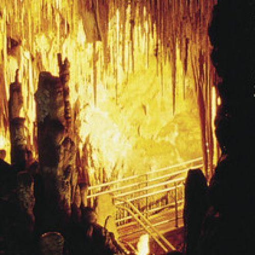 Hastings Caves, Huon Valley Tasmania