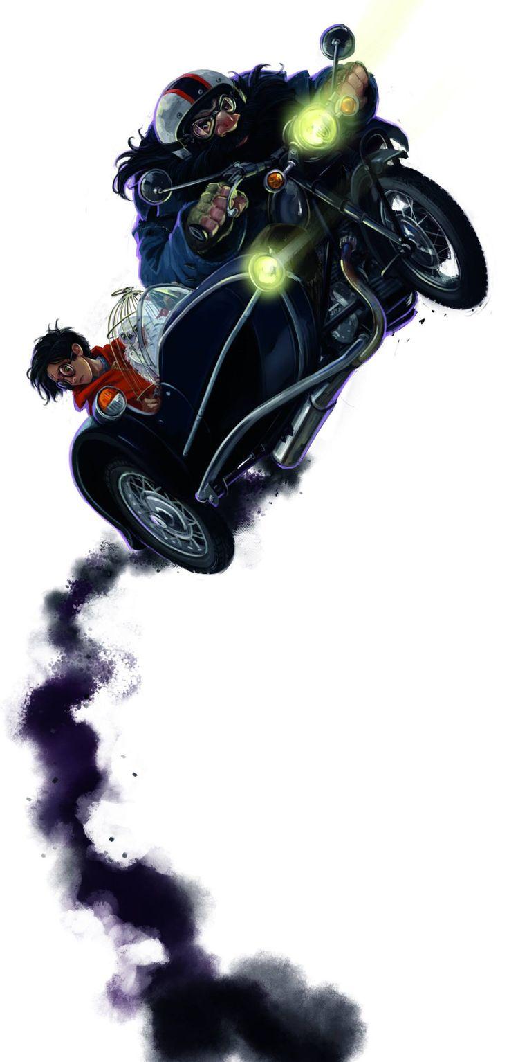 Deathly Hallows back illustration by Jonny Duddle