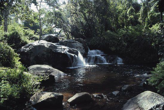 Waterval op Zomba Plateau, Malawi #Malawi #Zomba Plateau http://www.mambulu.com/safari/malawi18/reissuggesties-malawi/278-luxe-wildlife-cultuur-safari-malawi-zambia-1.html#dag-13-zomba-plateau