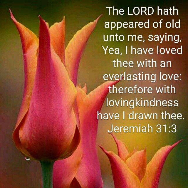 Jeremiah 31:3 KJV | Flowers & Verses | Bible scriptures ...
