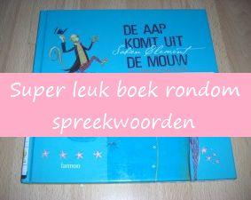 Spreekwoorden in een prentenboek - KlasvanjufLinda.nl - vol met leuke lesideeën en lesidee