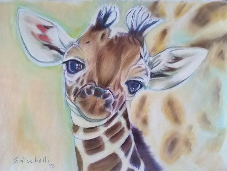 Cucciolo di giraffa - disegno originale - matite colorate e pastelli morbidi su carta colorata - misure: 32 x 24 cm. - anno: 2015.  #art #giraffe #animals