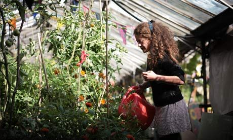 Squat-topia ... at Grow Heathrow, squatters grow organic vegetables and hold craft workshops for locals. Photograph: Martin Godwin for the Guardian