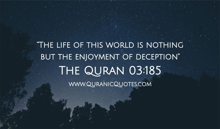 """The Qur'an 03:185 (Surah al-Imran) """"The life of this world is nothing but the enjoyment of deception."""""""