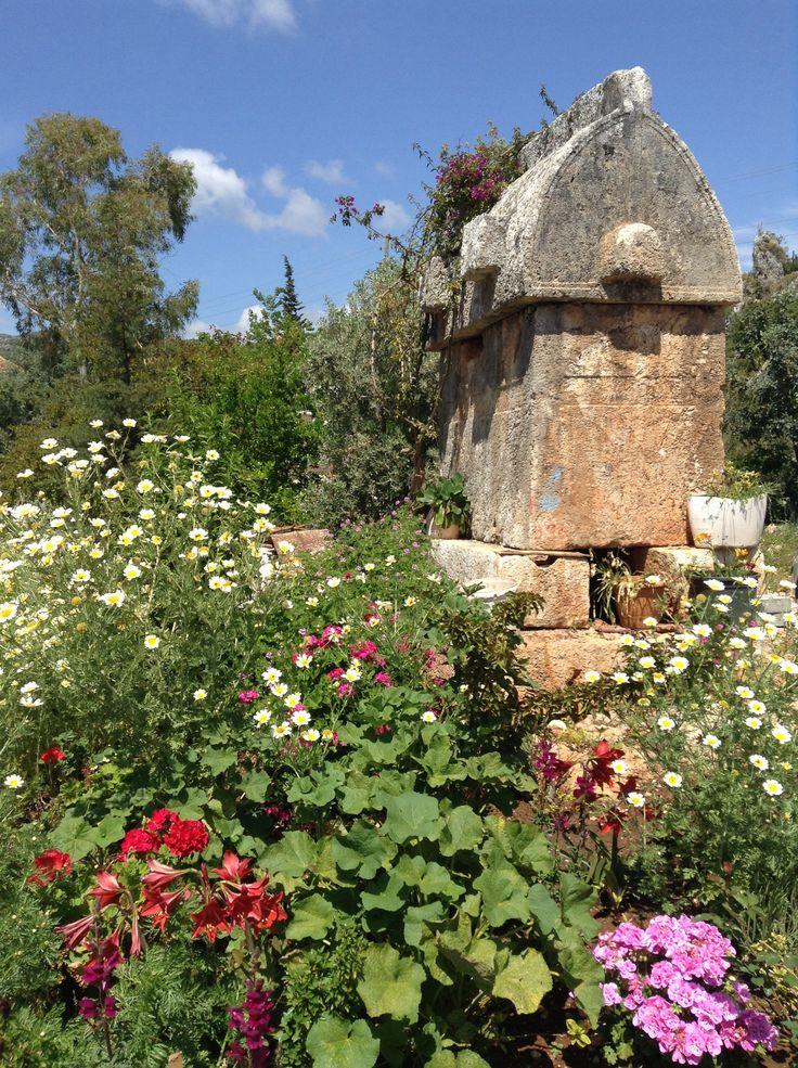 A Lycian tomb in the back yard! Ucagiz