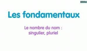 Le nombre du nom : singulier, pluriel. Comment reconnaître le singulier et le pluriel des noms communs ? Cette vidéo décrit le nombre du nom, qu'il soit singulier, soit pluriel.